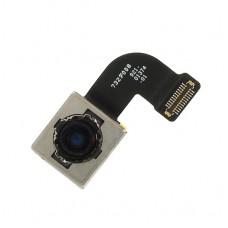 กล้องหลัง - iPhone 8 / งานแท้